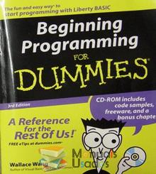 Beginning Programming for Dummies - Wallace Wang
