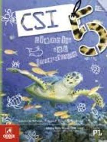 CSI5 - Adriana Mota Ram