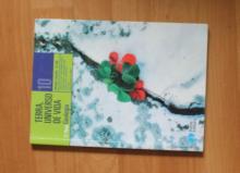 Biologia Geologia 10º - Geologia - Terra, Universo de vida - Amaro