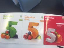 Matematica cinco - Ana Ribeiro Rosa