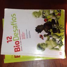 BioDesafios - Elsa Riberio