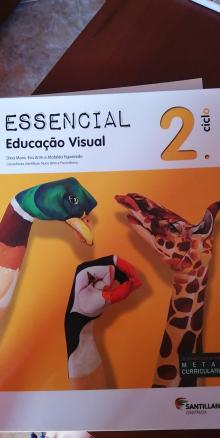 Essencial Educação Visual