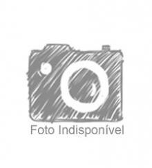 Dicionário Fundamental da Língua Portuguesa 2006 - Dicionários Editora da Porto Editora - acordo ortográfico de 2011 - com o antes e o depois