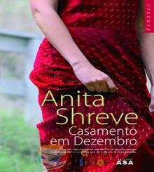Casamento em Dezembro - Anita Shreve