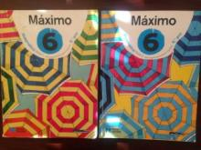 Máximo 6 Matemática - Maria Augusta Ferreira Ne...