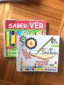 Saber Ver/Saber Fazer - Dinis de Carvalho