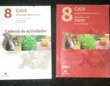 GAIA 8 - Helena Vaz Doming