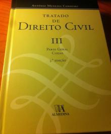 Tratado de Direito Civil III