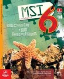 MSI 6 Matemática sob Investigação